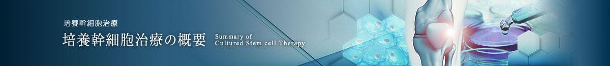 培養幹細胞治療の概要