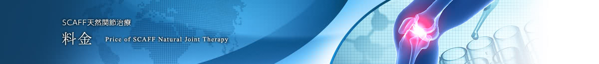 SCAFF天然関節治療の料金
